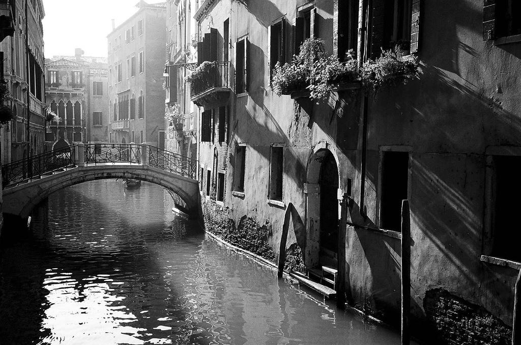 Venice2 venice3 venice4 venice5 venice6 venice7 venice8 venice9 venice10